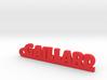 GAILLARD Keychain Lucky 3d printed