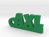 AXL Keychain Lucky 3d printed