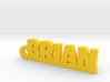 BRIAN Keychain Lucky 3d printed