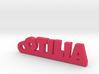 OTILIA Keychain Lucky 3d printed