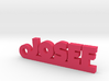 JOSEF Keychain Lucky 3d printed