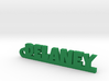 DELANEY Keychain Lucky 3d printed