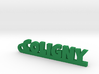 COLIGNY Keychain Lucky 3d printed