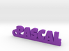 PASCAL Keychain Lucky 3d printed