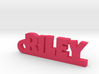RILEY Keychain Lucky 3d printed