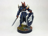 Dragonborn Paladin 3d printed Painted with acrylic paints on a custom 1 inch base.