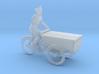 Bread tricycle (N 1:160) 3d printed