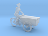 Bread tricycle (N 1:160) 3d printed