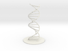 DNA Molecule Hollow, Large, 3 Sizes. 3d printed