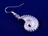 Nautilus Shell Earrings 3d printed exterior side