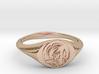 Leonidas Ring 3d printed