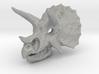 Triceratops Dinosaur Skull Pendant 3d printed