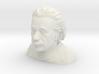1/6 Einstein Bust (Solid) 3d printed