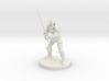 Half Elf Great Weapon Fighter 3d printed