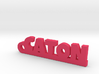 CATON_keychain_Lucky 3d printed