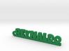 REYNALDO_keychain_Lucky 3d printed
