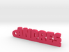 ANDRES_keychain_Lucky 3d printed
