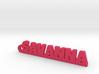 SAVANNA_keychain_Lucky 3d printed