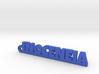 INOCENEIA_keychain_Lucky 3d printed