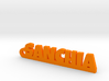 SANCHIA_keychain_Lucky 3d printed