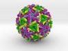 Sindbis Virus 3d printed