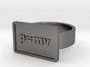 Momentum Ring 3d printed