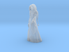 Mrs. Claus Standing 3d printed