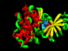 JAK1 Kinase Domain with inhibitor (pdb id 4K6Z) 3d printed