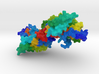 Nitric Oxide Synthase 3d printed