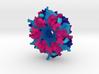 Carboxysome Subunit CcmK1 3d printed