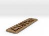 MiSTer Case Logo 3d printed