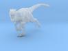 Raptor 1 3d printed