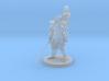 Barbarian and Girl Mage 3d printed