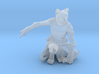 Tabaxi Rogue (Male) 3d printed