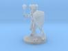 Tiefling Male Cleric 3d printed