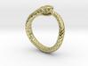 Ouroboros Snake Ring 3d printed
