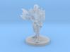 Elven Barbarian 3d printed