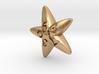 Starfish d10 3d printed