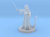 Tiefling Wizard  with Glasses 3d printed