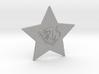 star-taurus 3d printed star sign taurus