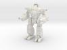 Dolee Mechanized Walker System  3d printed