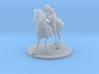 Human Cavalier Jousting 3d printed
