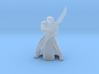 Star Wars Elite Praetorian Guard with Spear figure 3d printed