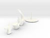 Hippocampus 3d printed