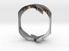Bird Ring-Bird (buy with Bird Ring - Sky) 3d printed