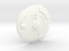 200x Council Guard Shield 3d printed