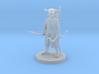 Male Elf Druid with Skull Helm 3d printed