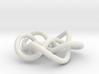 Prime Knot 8.16 3d printed