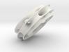 SjooTorusScaled_11cm 3d printed