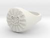ring -- Wed, 29 Jan 2014 23:16:12 +0100 3d printed
